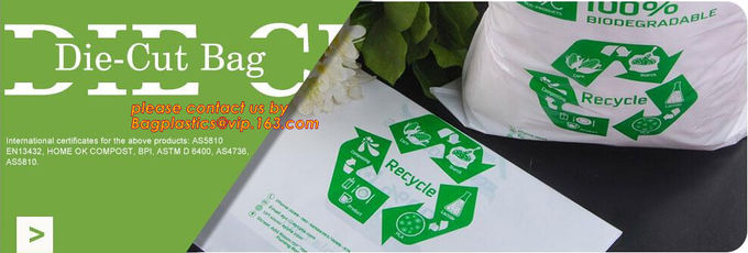 YANTAI BAGEASE PACKAGING PRODUCTS CO.,LTD. controle de qualidade 19