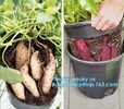 Green Gardening Biodegradable Recycling Bags Seeding Nursery Pots