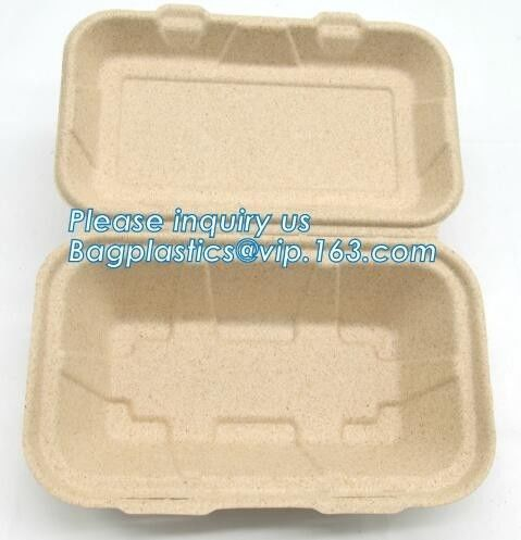 Compostable Dinnerware Corn Starch Biodegradable Meat / Cake / Rectangular Tray