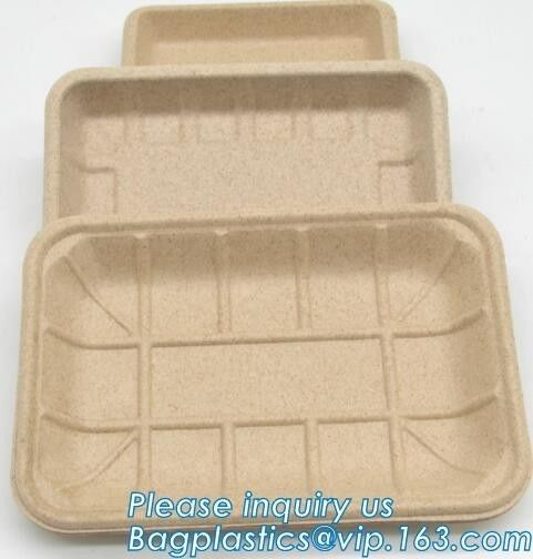 Dishes Plates Eco Friendly Dinnerware Blister Packaging Resturant Serving Tray